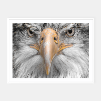Thumbnail image of zappwaits Eagle Framed poster, Live Heroes