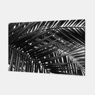 Miniatur Tropical Palm Leaves - Black and White Canvas, Live Heroes