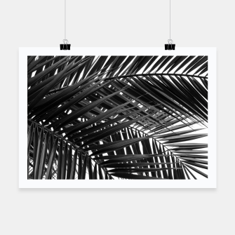 Thumbnail image of Tropical Palm Leaves - Black and White Poster, Live Heroes