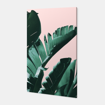 Thumbnail image of Banana Leaves Finesse #3 #tropical #decor #art  Canvas, Live Heroes