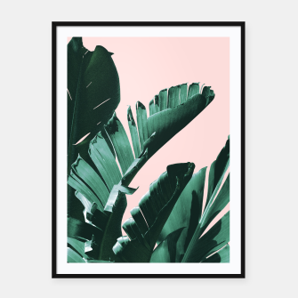 Thumbnail image of Banana Leaves Finesse #3 #tropical #decor #art  Plakat mit rahmen, Live Heroes