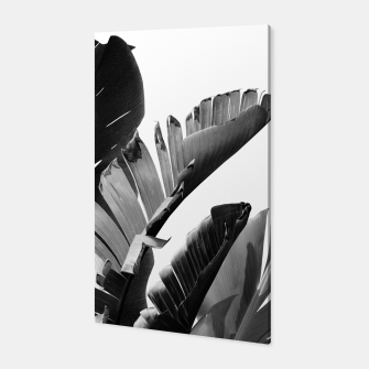 Banana Leaves Finesse #2 #tropical #decor #art Canvas obraz miniatury