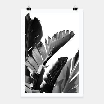Miniaturka Banana Leaves Finesse #2 #tropical #decor #art Plakat, Live Heroes