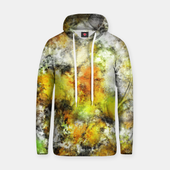 Thumbnail image of Winter sunlight Hoodie, Live Heroes