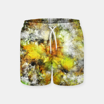 Thumbnail image of Winter sunlight Swim Shorts, Live Heroes