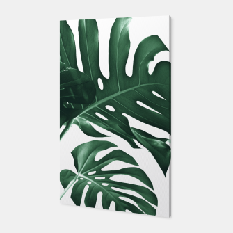 Miniatur Tropical Monstera Finesse #1 #minimal #decor #art Canvas, Live Heroes