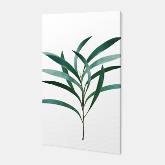Miniatur Eucalyptus Branch Delight #1 #foliage #decor #art Canvas, Live Heroes