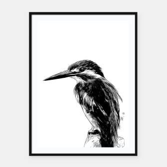 Thumbnail image of Kingfisher v2 vawh Framed poster, Live Heroes