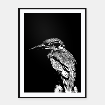 Thumbnail image of Kingfisher v2 vabw Framed poster, Live Heroes