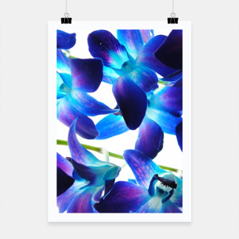 Thumbnail image of Purple  Orchids Poster, Live Heroes