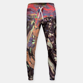 Thumbnail image of tex Sweatpants, Live Heroes