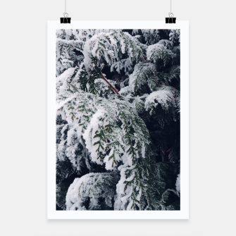 Thumbnail image of thuja brabant in the snow Plakat, Live Heroes