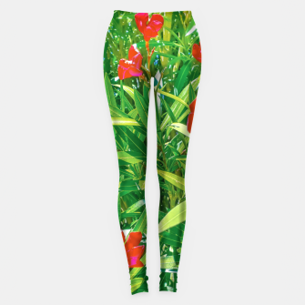 Miniatur Flowers and Green Plants at Outdoor Garden Leggings, Live Heroes
