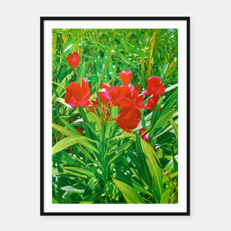 Miniatur Flowers and Green Plants at Outdoor Garden Framed poster, Live Heroes