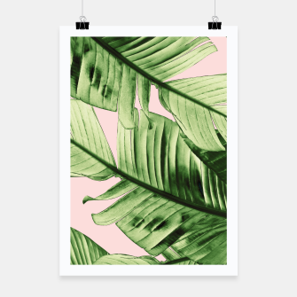 Miniaturka Tropical Blush Banana Leaves Dream #6 #decor #art Plakat, Live Heroes