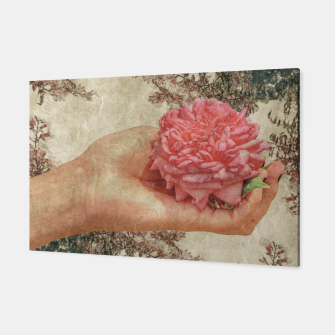 Thumbnail image of Beauty Concept Photo Collage Illustration Canvas, Live Heroes