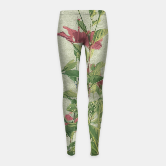 Miniatur Botanical Vintage Style Motif Artwork Girl's leggings, Live Heroes