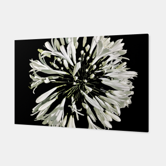 Thumbnail image of White Stylized Radial Flower Artwork Canvas, Live Heroes