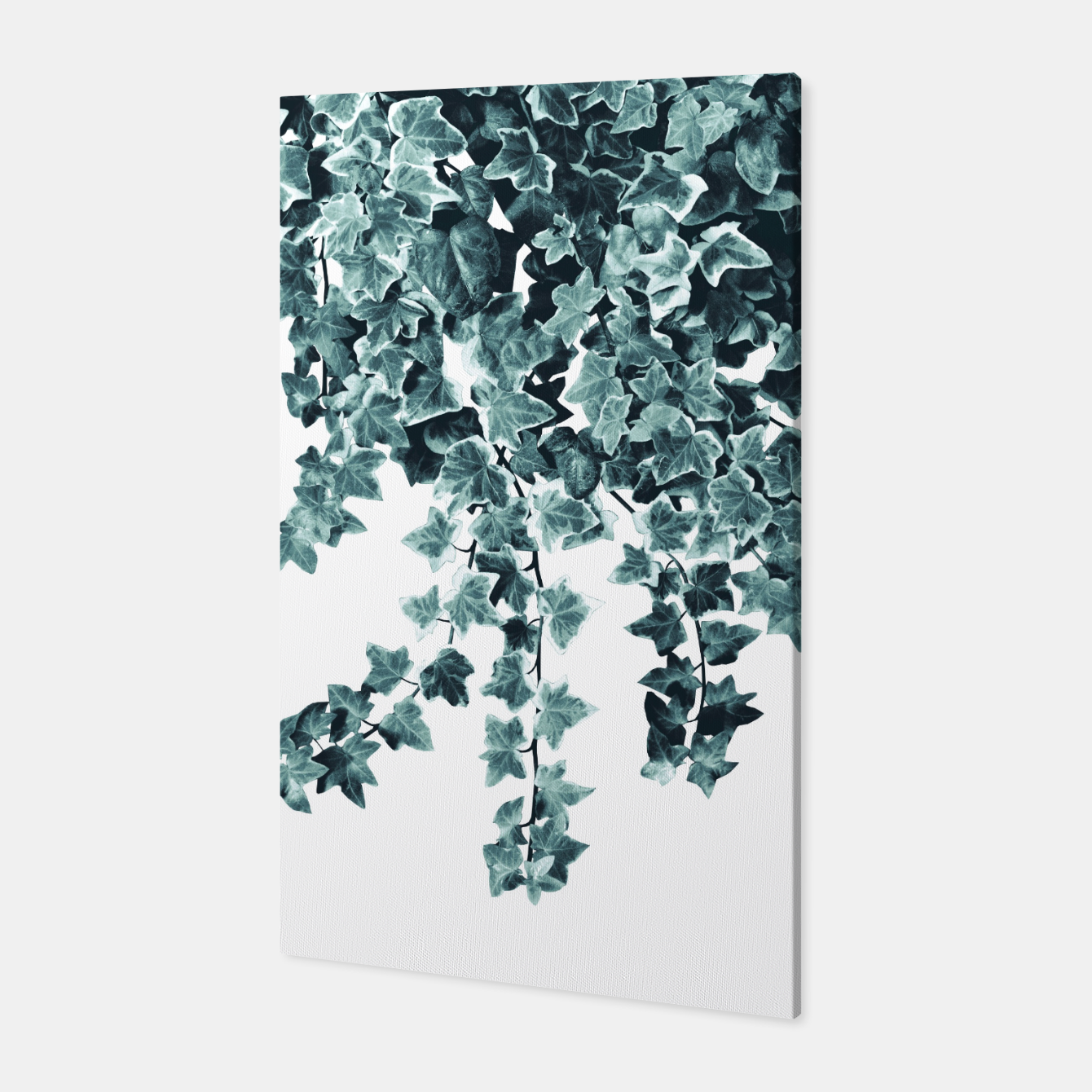 Image of Ivy Delight #1 #wall #decor #art  Canvas - Live Heroes
