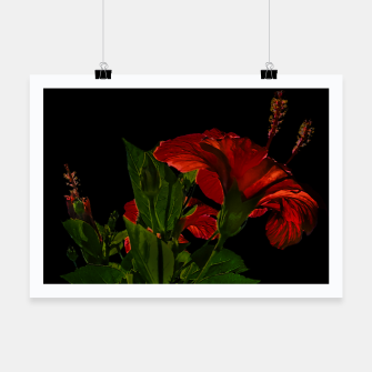 Thumbnail image of Dark Floral Photo Illustration Poster, Live Heroes