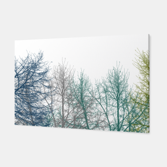 Thumbnail image of Multicolor Graphic Botanical Print Canvas, Live Heroes