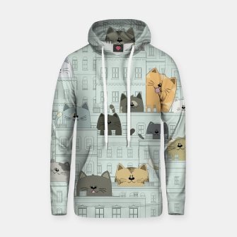 Miniatur Cats and the City Hoodie, Live Heroes