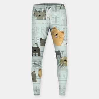 Miniatur Cats and the City Sweatpants, Live Heroes