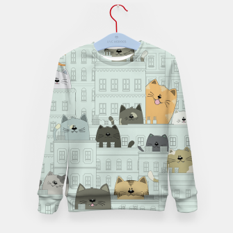 Miniatur Cats and the City Kid's sweater, Live Heroes