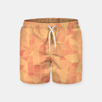 Geometric Shapes Fragments Pattern 2 po Swim Shorts miniature