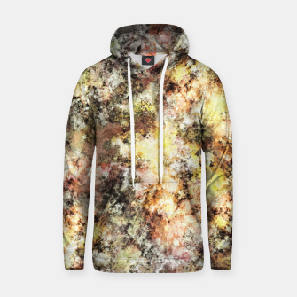 A little cool sunlight Hoodie thumbnail image