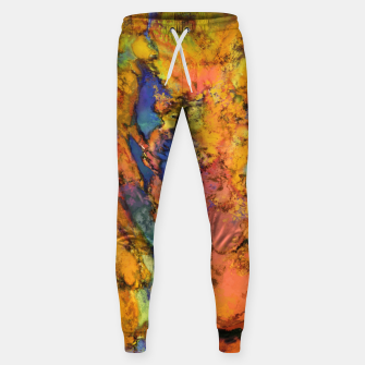 Thumbnail image of Landslip Sweatpants, Live Heroes
