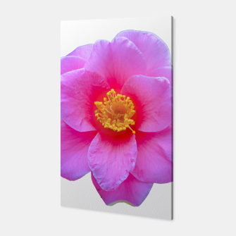Thumbnail image of Beauty Violet Flower Photo Print Canvas, Live Heroes