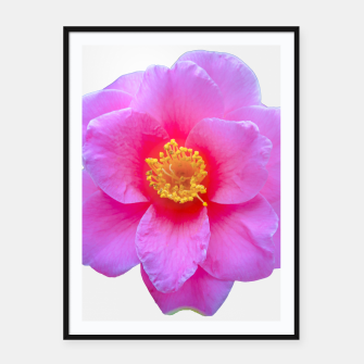 Thumbnail image of Beauty Violet Flower Photo Print Framed poster, Live Heroes