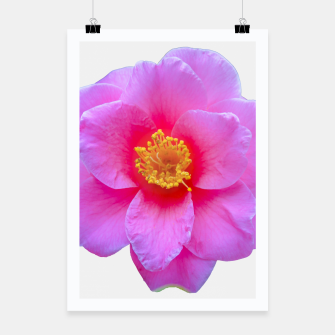 Thumbnail image of Beauty Violet Flower Photo Print Poster, Live Heroes
