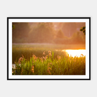 Thumbnail image of Narew sunset Plakaty w ramie , Live Heroes