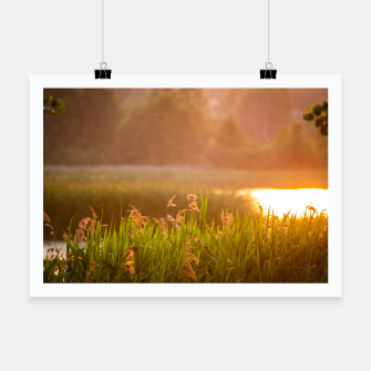 Thumbnail image of Narew sunset Plakat, Live Heroes