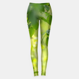 Thumbnail image of Spring leafs Legginsy, Live Heroes