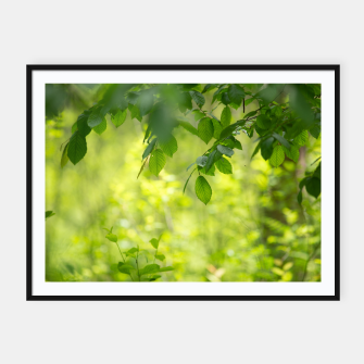 Thumbnail image of Spring leafs Plakaty w ramie , Live Heroes