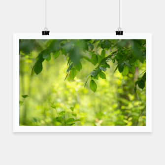 Thumbnail image of Spring leafs Plakat, Live Heroes