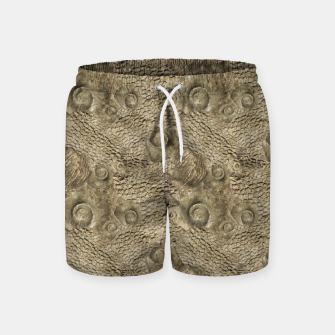 Thumbnail image of Ordovician Fossils Seamless Pattern Swim Shorts, Live Heroes