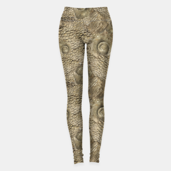 Thumbnail image of Ordovician Fossils Seamless Pattern Leggings, Live Heroes