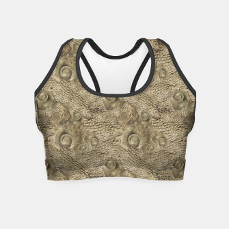 Thumbnail image of Ordovician Fossils Seamless Pattern Crop Top, Live Heroes