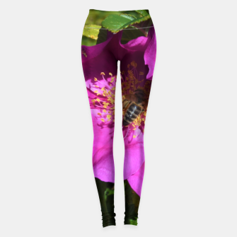 Thumbnail image of  wild rose with bee Legginsy, Live Heroes