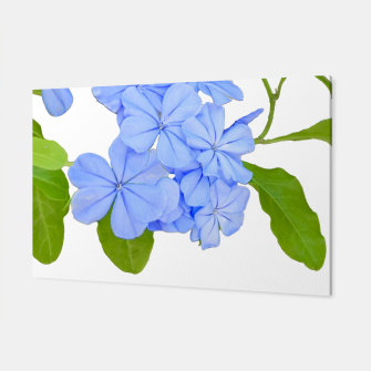 Stylized Floral Print Photo Canvas obraz miniatury