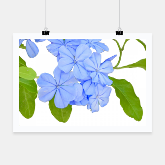 Thumbnail image of Stylized Floral Print Photo Poster, Live Heroes