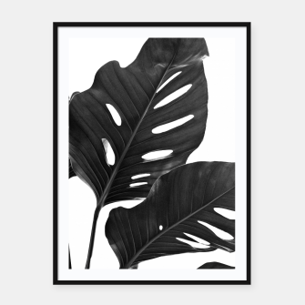 Miniatur Monstera Black & White Vibes #1 #minimal #decor #art Plakat mit rahmen, Live Heroes