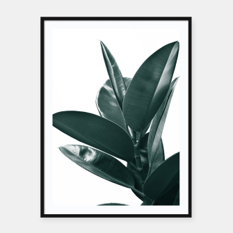 Miniatur Ficus Delight #1 #tropical #decor #art Plakat mit rahmen, Live Heroes
