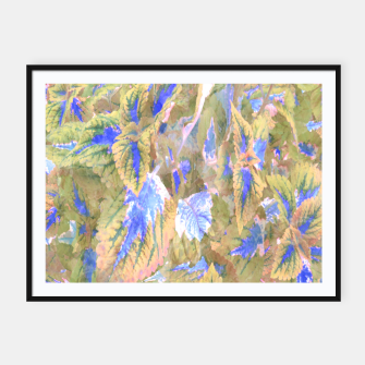 Thumbnail image of botanical coleus leaves camouflage art 2/3 ( yellow blue ) Framed poster, Live Heroes