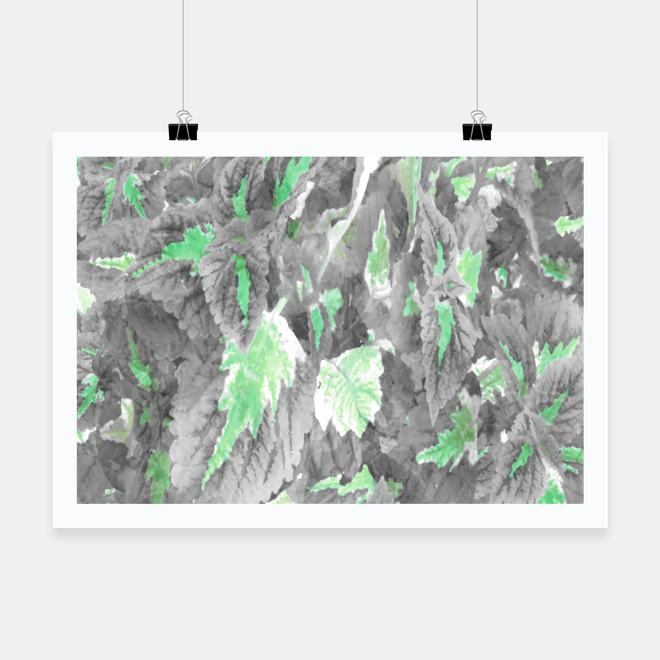 Image of botanical coleus leaves camouflage art 3/3 ( gray green ) Poster - Live Heroes