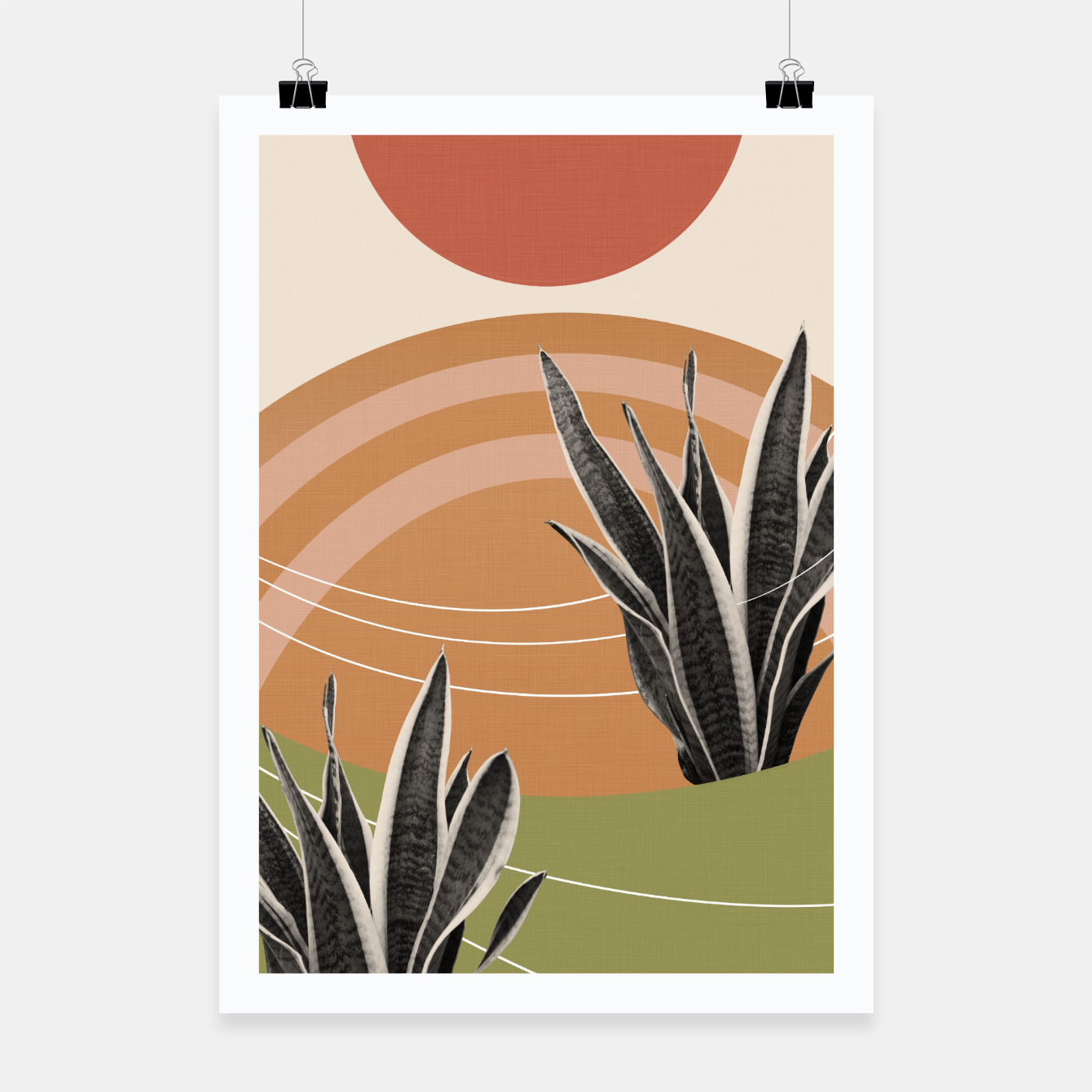 Image of Snake Plant in the Desert #1 #tropical #wall #art  Plakat - Live Heroes